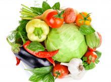 Современные подходы в технологии выращивания овощей