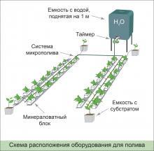 Как организовать автоматический полив в теплице своими руками