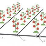 Схема высокие грядки - 2