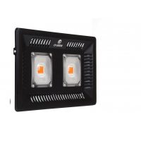 Прожектор светодиодный 100 W, Full spectrum – 100