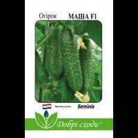 Огірок самозапильний Маша F1 (10 шт) - Seminis