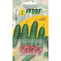 Огурцы Феникс (50 дражированных семян) -SEDOS