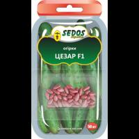 Огурцы Цезарь F1 (50 дражированных семян) -SEDOS
