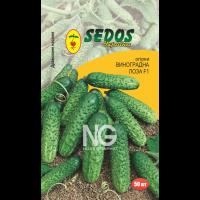 Огурцы Виноградная Лоза F1 (50 дражированных семян) -SEDOS