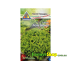 Салат листковий Лолла Біонда (1г)