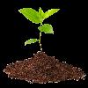 Субстраты и почвосмеси